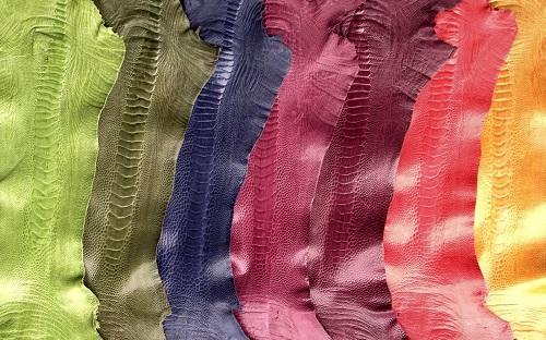 Da được nhuộm nhiều màu thịnh hành trên thị trường